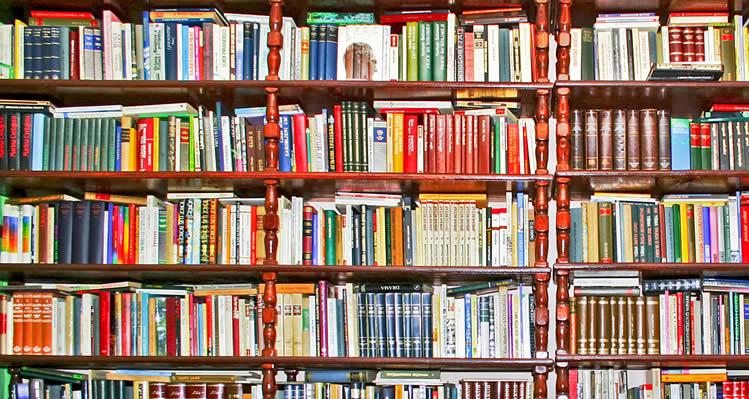 Dia da Criança: promoção de livros infantis na CAASP vai até 19 de outubro